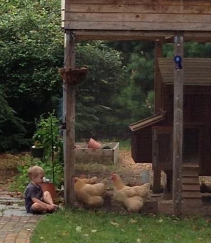 Dean & hens