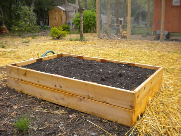 Delightful New Raised Bed